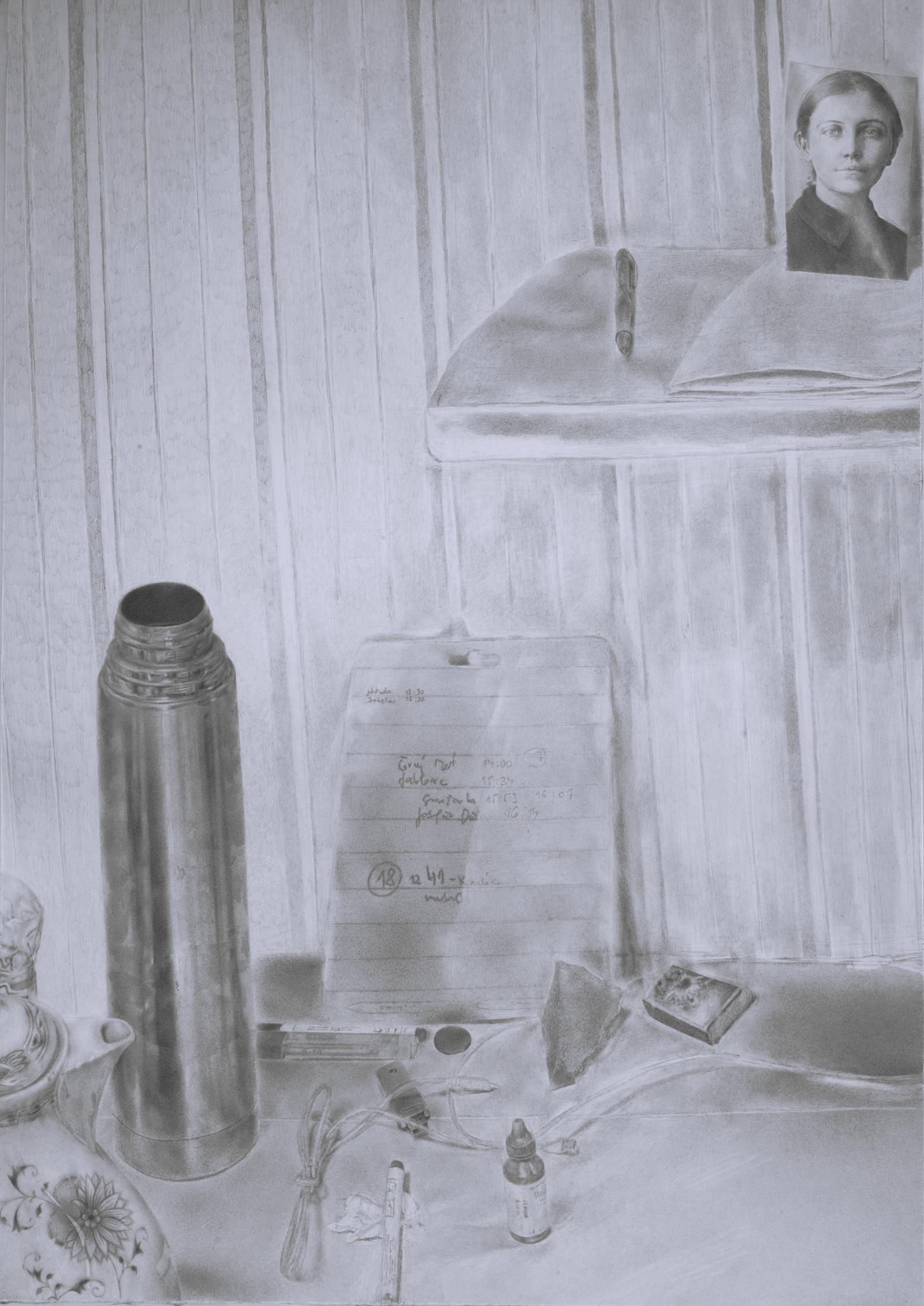 Kresby Drawings Tereza Reichova